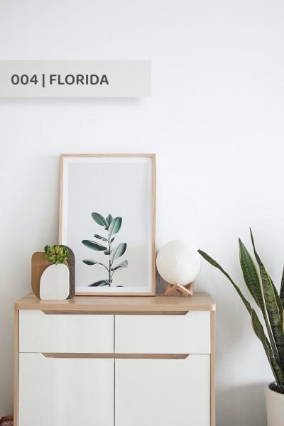 Volvox | Espressivo Lehmfarbe | Florida 004