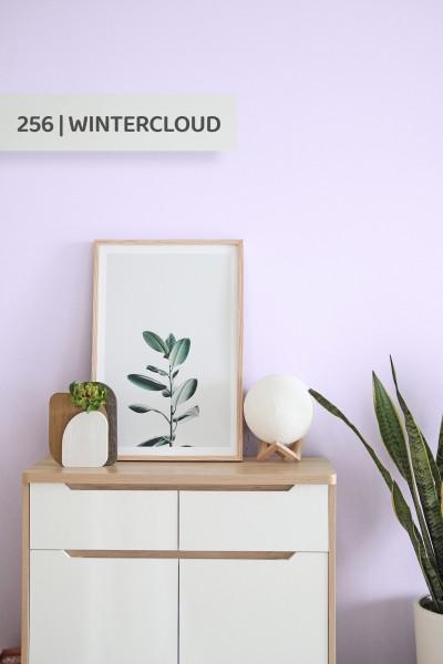 Volvox | Espressivo Lehmfarbe | Wintercloud 256