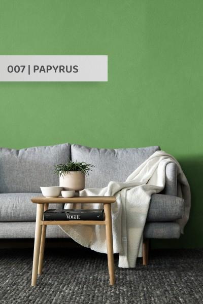 Volvox | Espressivo Lehmfarbe | Papyrus 007