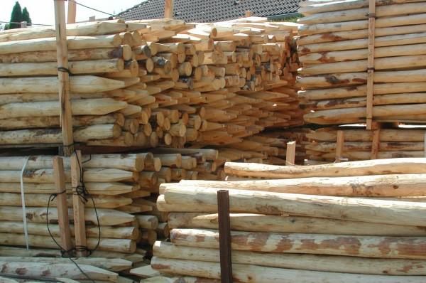 Zaunpfähle aus Kastanienholz