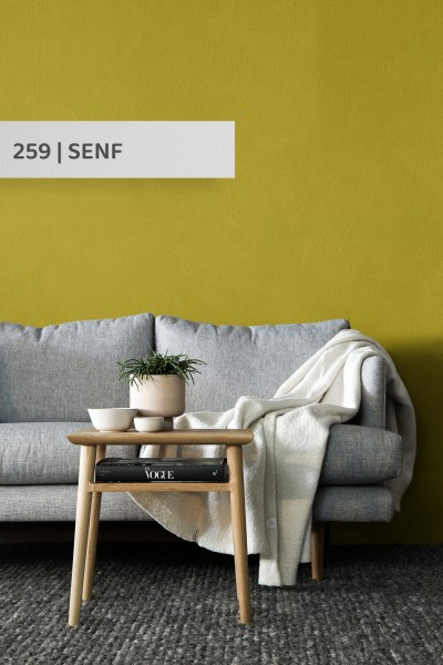 Volvox   Espressivo Lehmfarbe   Senf 259